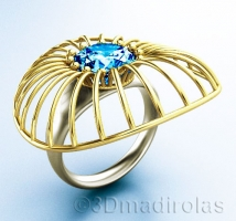 FUTURE ring: Silver 925/Gold 24k.
